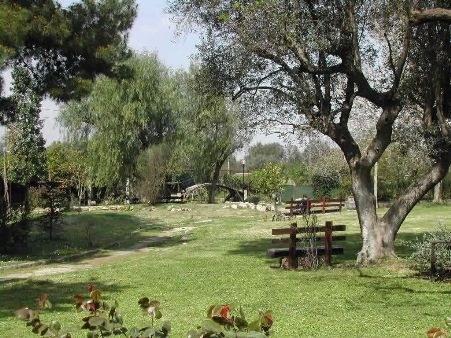 oasi1.jpg