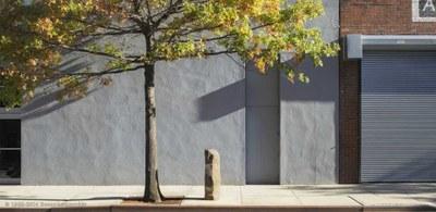 Joseph Beuys, 7000 Eichen (7000 Quercie), installazione inaugurata a dOCUMENTA 7 nel 1982