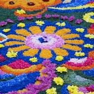 fiori190.jpg