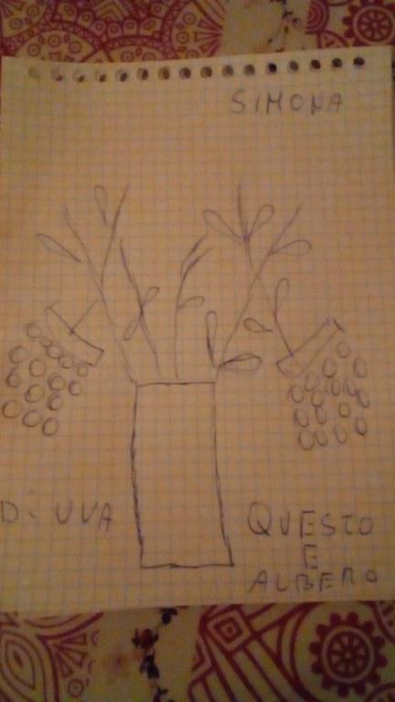 vigna (1).jpg